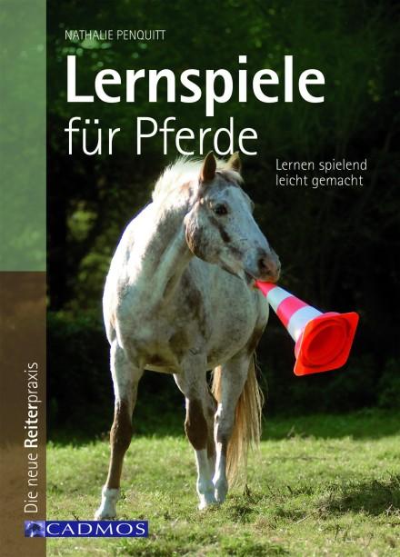 lernspiele_fuer_pferde_300